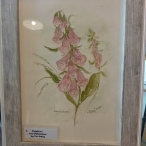 Foxgloves by Tess Paley